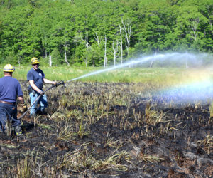 Firefighters Extinguish Woods Fire in Bristol