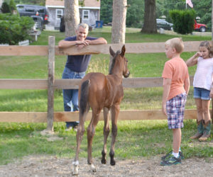 David Cronk's new colt, Ozzie, greets family members in his private paddock. From left: David Cronk and twins Otto and Ophelia Martin. (Charlotte Boynton photo)
