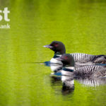 First National Bank Announces Photo Contest Winners