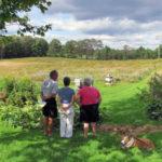 Pollinator-Garden Walking Tour