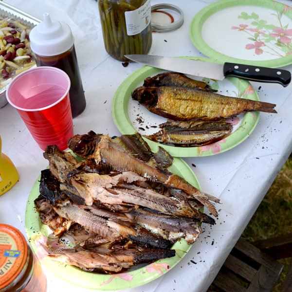 A plate of smoked alewives at the Alewife Harvesters of Maine's ninth annual pig roast in Dresden on Saturday, Aug. 27. (Maia Zewert photo)
