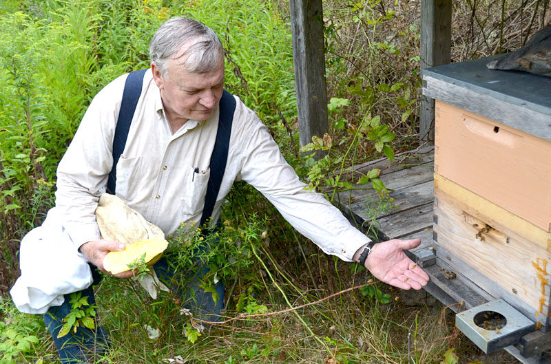 Ray Shadis sits with his honeybees at the apiary on his farm in Edgecomb on Friday, Aug. 26. (Abigail Adams photo)