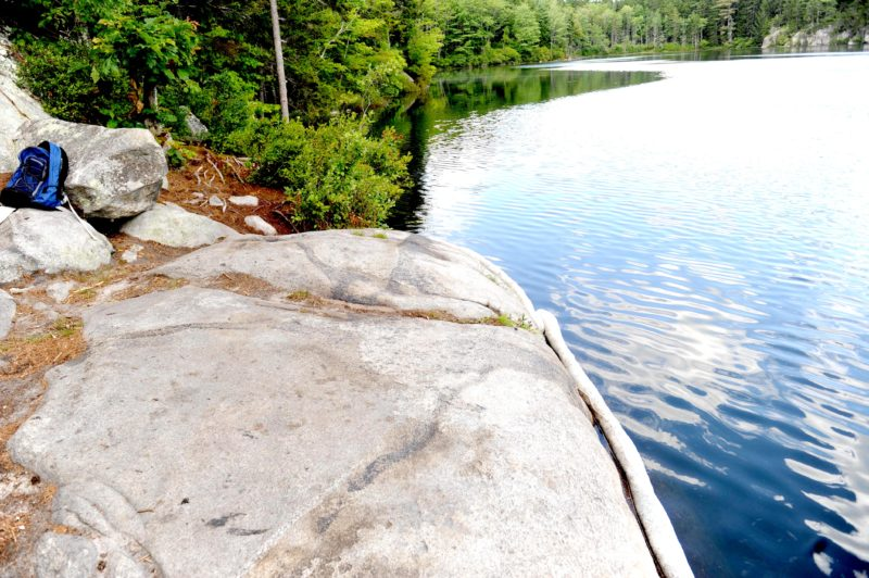 The shore of Peter's Pond in Waldoboro, where someone dumped tar or a tar-like substance, prompting a state-led cleanup effort. (Paula Roberts photo)