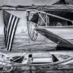 David Higgins Art at Rising Tide