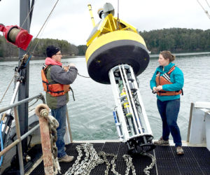UMaine Doctoral Student Seeks To Increase Seafood Industry Sustainability