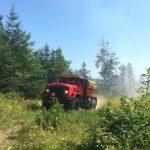 Crews Extinguish Weekend Woods Fire in Somerville