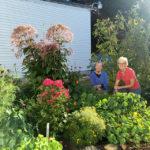 Beautiful Garden at Wiscasset Elementary School