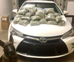 New Hampshire Police: Waldoboro Men Had 20 Pounds of Pot