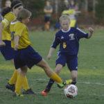 Lady Riverhawks advance to Busline League championships