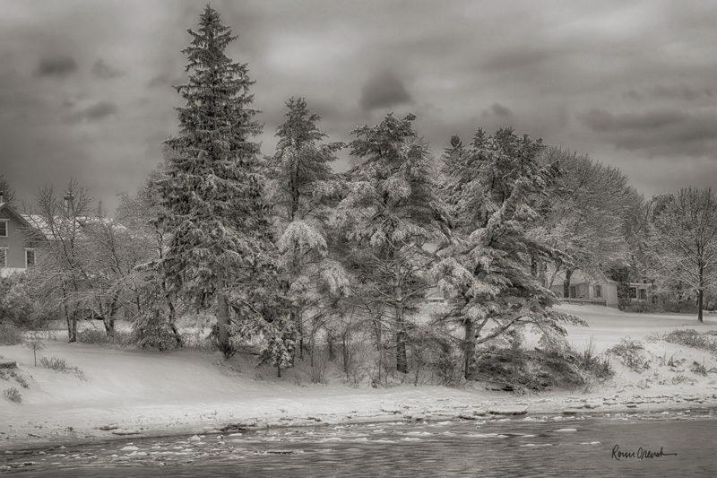 """""""Under a Blanket,"""" by Ronn Orenstein"""