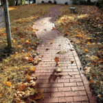 New Path at Wiscasset Public Library