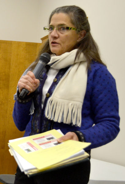 Stepping Stone Housing Inc. Executive Director Marilee Harris discusses the nonprofit's plan for the Blue Haven property during a public hearing at the Damariscotta town office Monday, Dec. 5. (Maia Zewert photo)