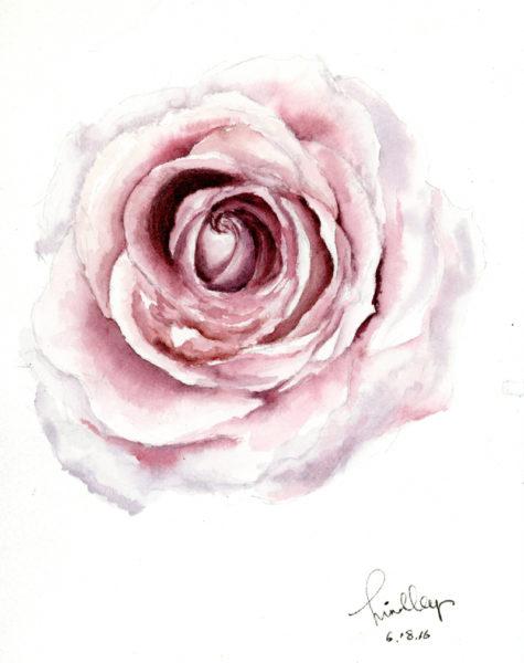 """""""Rose,"""" by Hindley Wang"""