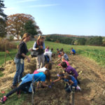 GSB School Garden Established at DRA's Round Top Farm