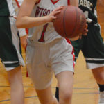 Cobras clip Lady Wolverines