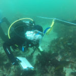 DMC Certifies Scientific Divers