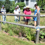Pollinator Seed Swap and Workshop at Spectrum