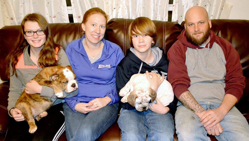From left: Brooke, Jessica, Ashton, and Pete Seiders. The Seiders family raises olde English bulldogges at their home in Bristol. (Maia Zewert photo)