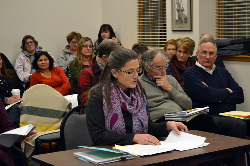 Stepping Stone Housing Inc. Executive Director Marilee Harris updates the Damariscotta Planning Board on the nonprofit's plans Monday, Feb. 6. (Maia Zewert photo)