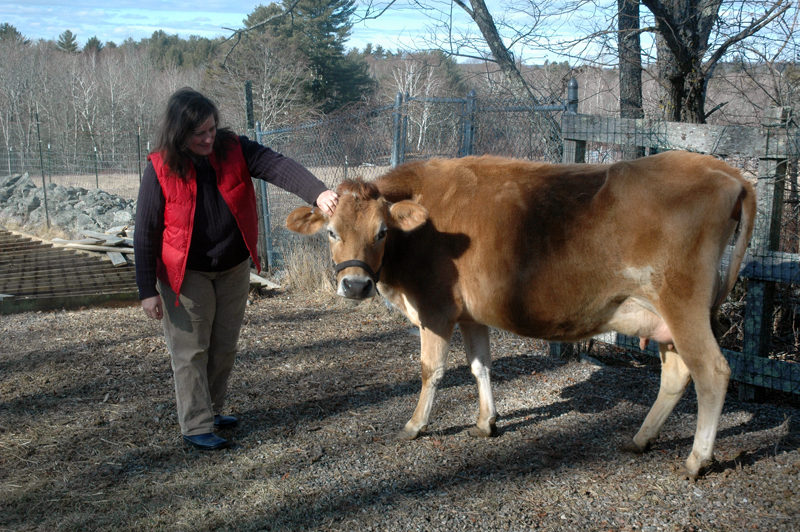 Allison Lakin with Darla at East Forty Farm and Dairy. (Alexander Violo photo)