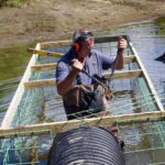 Beaver Expert to Give Talk at Midcoast Conservancy