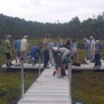 Guided Bog Walk at Hidden Valley Nature Center