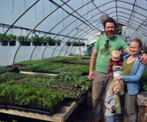 Spencer's Greenery Property Finds New Life as Morning Dew Seedling and Supply