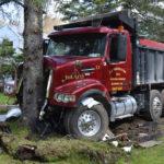 Dump Truck Strikes Tree in Bristol