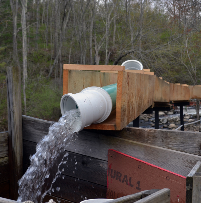 "Water pours from piping within the wooden chute the ""Maine Cabin Masters"" replaced at the Damariscotta Mills fish ladder. (Abigail Adams photo)"