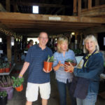 Morris Farm Plant Sale Features Heirloom Tomatoes, Hardy Perennials