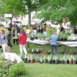 Plant and Bake Sale at Vose Library