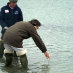 Water-Quality Sample Training with PWA