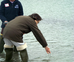 Water-Quality Sample Training with PWA