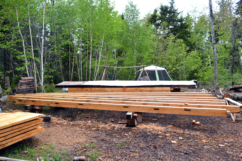 Lumber for one of Kenneth Kortemeier's personal projects on the grounds of the new Maine Coast Craft School. (Remy Segovia photo)