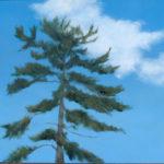 Artistic Interpretations of Local Landscape at Pemaquid Art Gallery