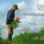 'Growing Local' Screening in Waldoboro