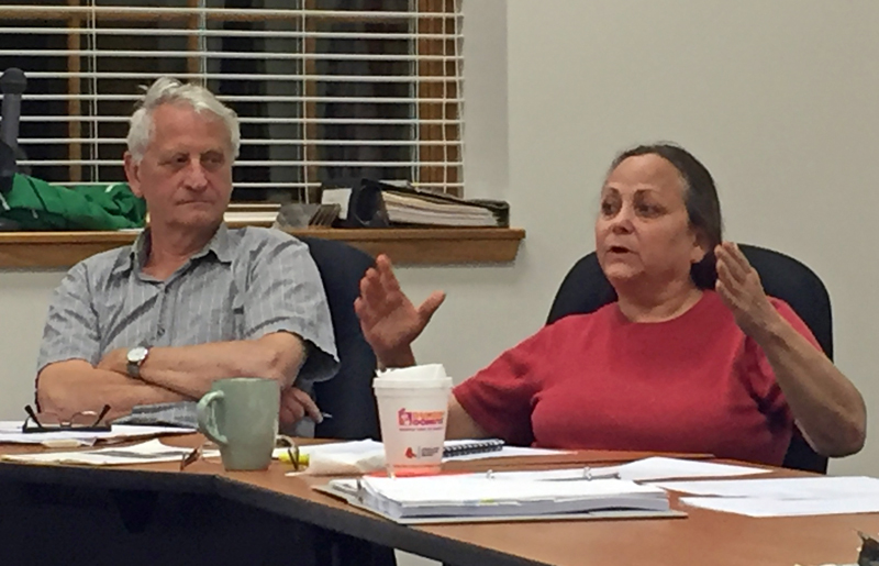 Damariscotta Planning Board member Shari Sage speaks in favor of a ban on graffiti and electronic signs as Town Planner Tony Dater looks on Monday, July 10. (Maia Zewert photo)