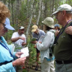 Fern Fun had by all at Hidden Valley Nature Center