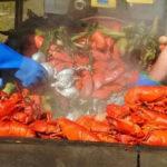 Pemaquid Beach Lobster Bake and Concert
