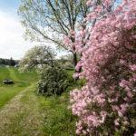 Oak Point Farm to Become Public Preserve