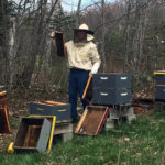 Pollination Services Workshop in Appleton