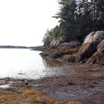 PWA Preserve Steward Hike Series Continues at Osborn Finch