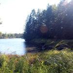 PWA Preserve Steward Hike Series Continues