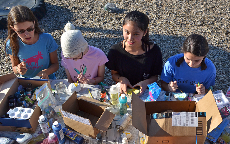 From left: Great Salt Bay Community School students Clara Goltz, Alice Skiff, Sonny Cumming, and Casey Nelson paint rocks to raise awareness of pediatric cancer. Skiff, of Newcastle, is undergoing chemotherapy after having brain surgery to remove a tumor in October 2016. (Maia Zewert photo)