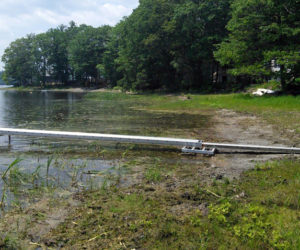 Jefferson resident Kelsie French's shoreline on Clary Lake in June shows the impact of the dropping water level. (Photo courtesy Clary Lake Association)