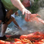 Mid-Coast Audubon Lobster Bake on Hog Island