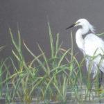 Babb to Teach Gouache Painting