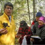 Coastal Maine Botanical Gardens to Host Edible Mushroom Workshop