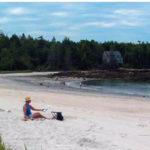 Last Summer Workshops at Beachcombers' Rest Nature Center