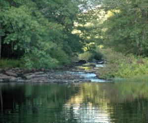 371-Acre Riverfront Preserve Opens in Waldoboro